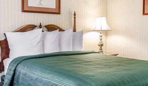 One Queen Bed - Handicapped