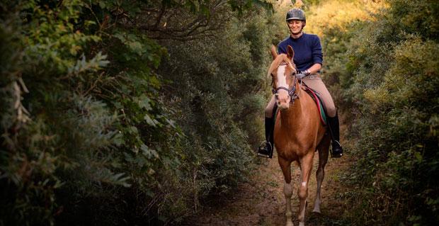 Horse Tours of Gettysburg